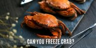 Can you Freeze Crabs?